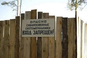 В Брянской области почти 90% скотомогильников оказались бесхозными