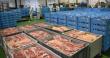 Курская область вошла в пятерку лидеров по производству мяса
