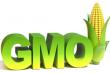 """Спор из-за термина """"ГМО"""" разгорается в ЕС"""