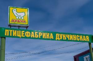 """На магаданской птицефабрике """"Дукчинская"""" выявили нарушения ветеринарных правил"""