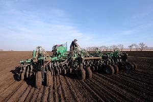 Россия приостановила экспорт зерна