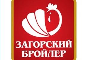 В Подмосковье убыточный «Загорский бройлер» накопил 5 млн рублей долгов по зарплате