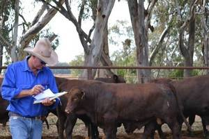 Власти Австралии отказались продавать крупный агрохолдинг иностранцам