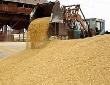 Россия - Бразилия. Мясо в обмен на пшеницу