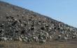 Таджикские ученые предложили уменьшить поголовье скота, чтобы сохранить пастбища