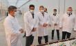 ОАЭ заинтересованы в прямых поставках мяса из Брянской области