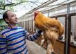 Краснодарский фермер представит в Москве уникальную коллекцию кур
