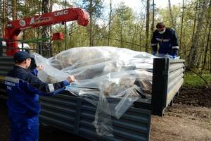 Томские ветеринары выясняют, кто выбросил шкуры и головы овец