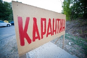 В двух районах Орловской области сняли карантин по бешенству животных