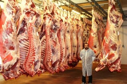 Мясо говядины. Охлажденка.