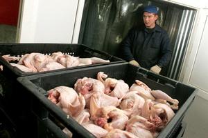 Белорусская птицефабрика не смогла провезти свою продукцию через российскую границу