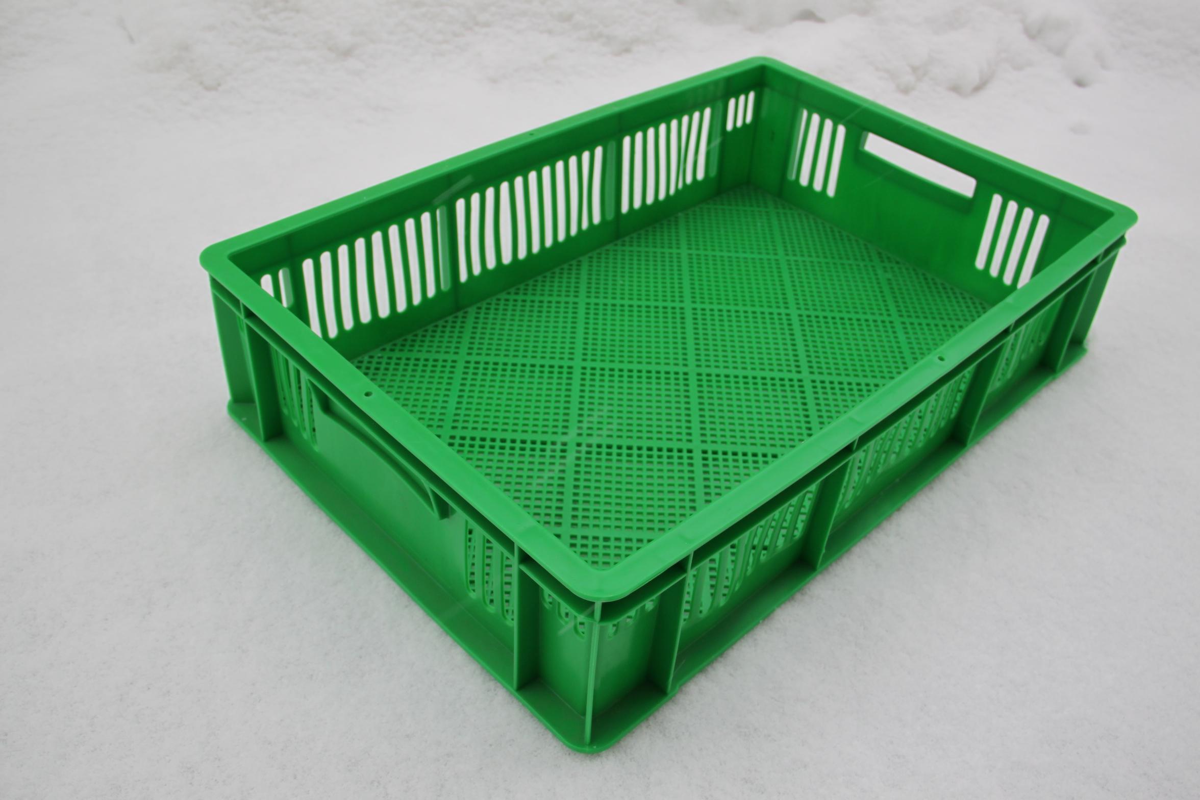 Ящики для суточных цыплят