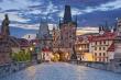Чехия вводит жесткий контроль за грузовиками с продуктами, въезжающими со стороны Польши
