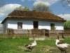 Минсельхоз Иркутской области представил перспективы развития села