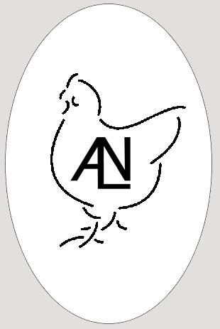Альнаир