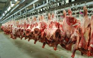 Австралийская мясная промышленность движется к новому рекорду