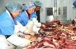 Казахстан: Недостаток организации мясной отрасли оборачивается недополученными миллиардами