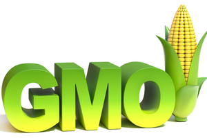 ЕЭК установила переходный период для маркировки товаров с ГМО