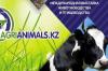AGRIANIMALS.KZ