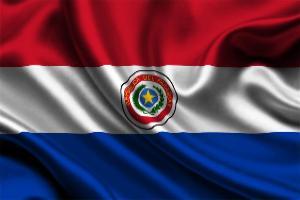 Парагвайскую говядину задержали за нарушения при перевозке