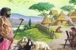 Исследование: европейцев белыми сделало сельское хозяйство