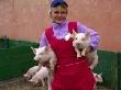 В 2011 году сельхозпредприятия Ульяновской области заработали больше всего денег за последние 20 лет