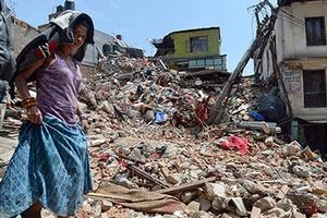 В результате землетрясения в Непале возникли огромные потери скота и урожая
