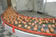 В Эстонии из продажи изъяты яйца пяти известных марок