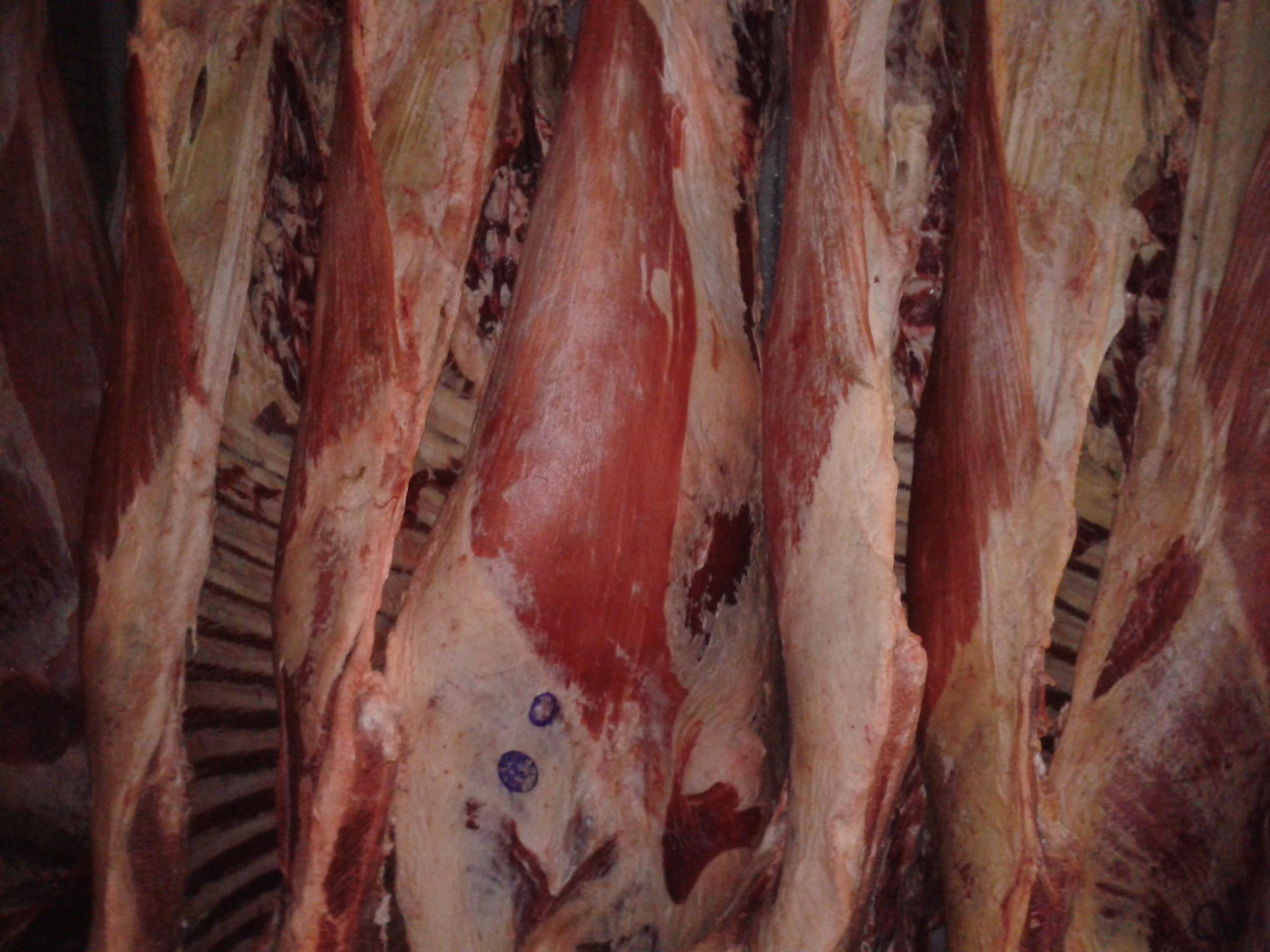 дешёвая говядина и свинина