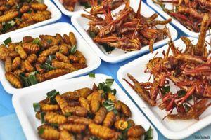 Евросоюз выявил плюсы употребления насекомых в пищу