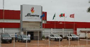 Minerva подготовила третью площадку для возобновления экспорта говядины в Россию