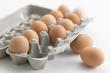 Украина заработала на экспорте яиц на 41% больше, чем в прошлом году