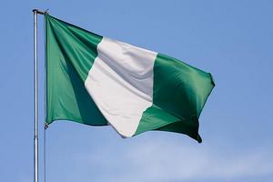 В Нигерии арестована большая партия контрабандного мяса птицы