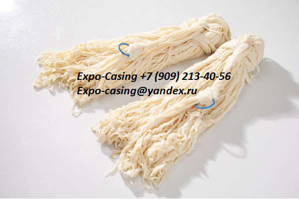 Ltd Expo-casing