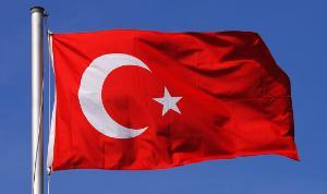 Минсельхоз ожидает, что Россия начнет поставлять говядину в Турцию в 2019 году