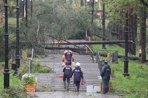 На Сахалине от октябрьских циклонов пострадали 46 сельхозпредприятий