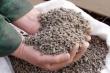 В Китае растут цены на корма после ввода пошлин на товары из США