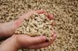 ЗАО «Нива» оптимизирует систему собственного кормопроизводства