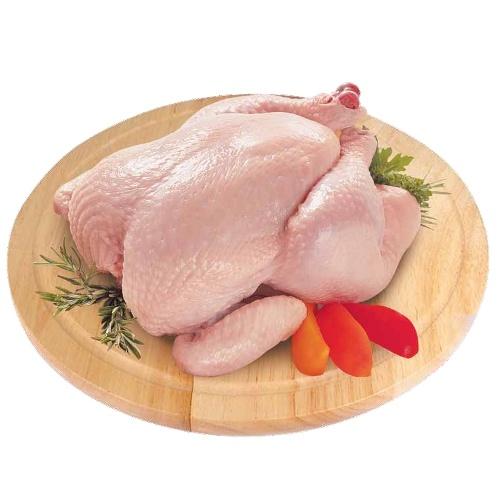 Курица бройлер 1 категории