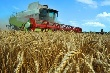 Федеральный центр обещает увеличить объем льготного топлива для южноуральских аграриев