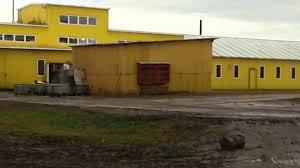 В Калининградской области продают имущество крупной свинобойни 38,6 млн рублей